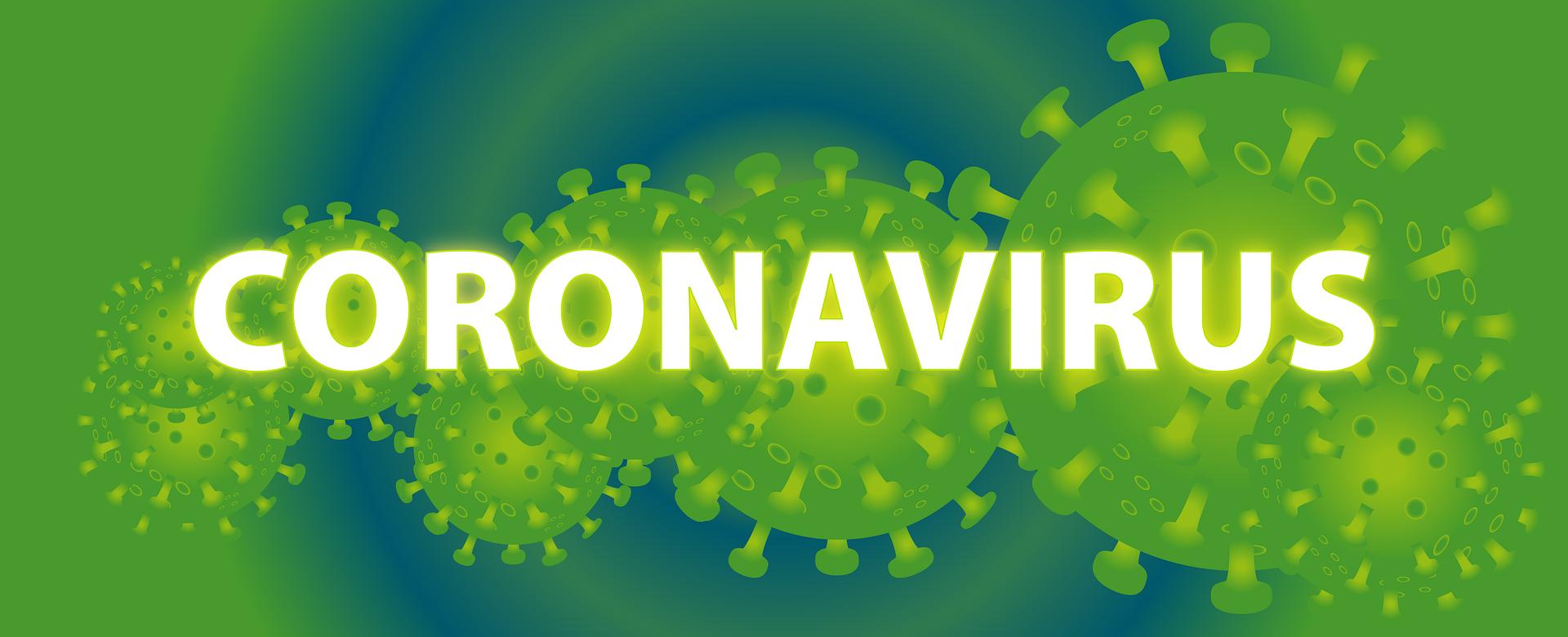 新型コロナウイルスの特徴